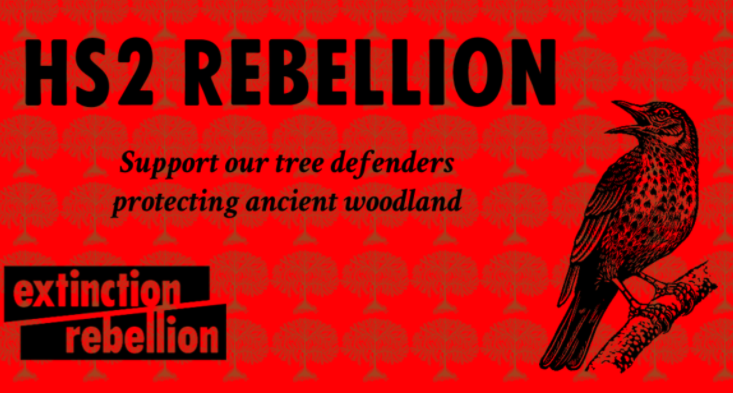 HS2 rebellion support our tree defenders protecting ancient woodland